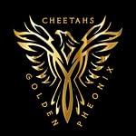 Cheetahs Golden Phoenix